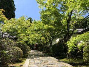 日本の食文化を学ぶ京都旅〜丸の内朝大学「食べる」を学ぶ薬膳クラス⑧vol.2〜